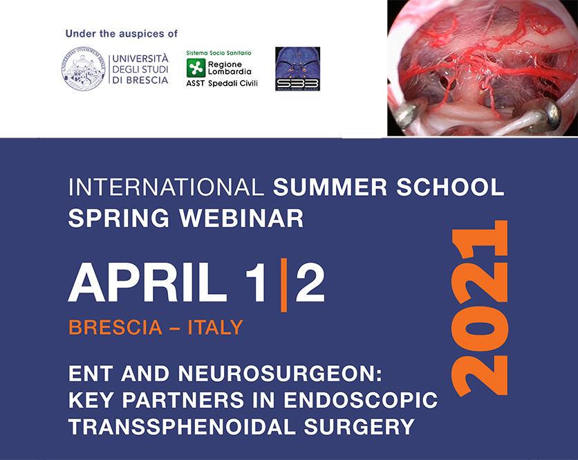 International Summer School Spring Webinar
